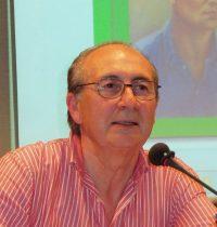 Ramón Fernández Palmeral